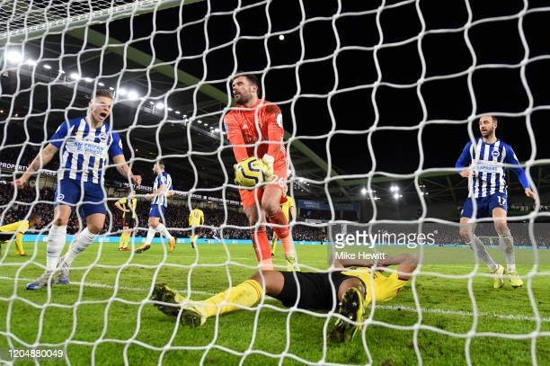 Adrian Mariappa and Ben Foster of Watford react after scoring an own goal during the Premier League match between Brighton & Hove Albion and Watford...