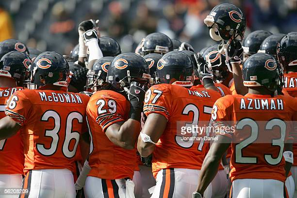 Adrian Peterson, Brandon McGowan, Jason McKie Jerry Azumah of the Chicago Bears celebrate on the field during the game against the San Francisco...