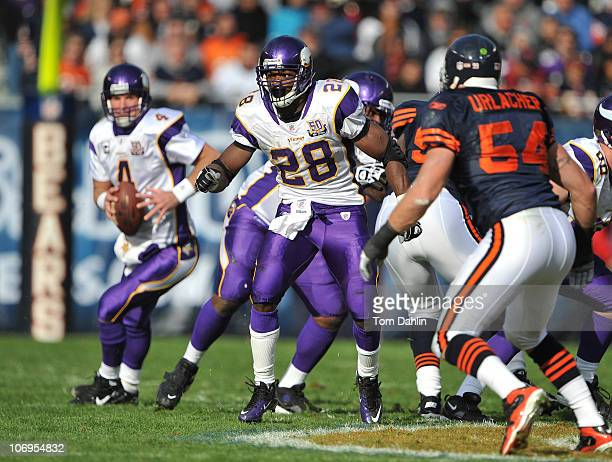 Adrian Peterson of the Minnesota Vikings blocks during an NFL game against the Chicago Bears at Soldier Field November 14 2010 in Chicago Illinois...