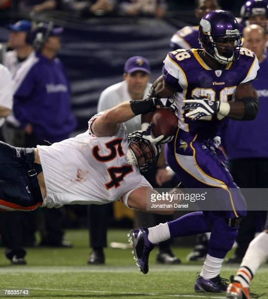 Adrian Peterson of the Minnesota Vikings breaks away from Brian Urlacher of the Chicago Bears at the Hubert H. Humphrey Metrodome on December 17,...