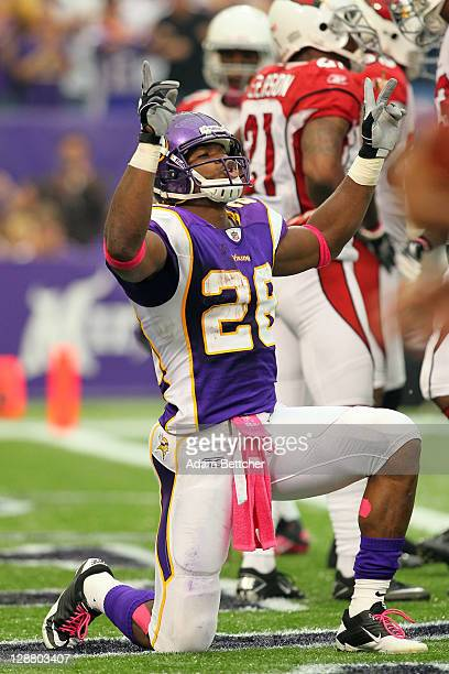 Adrian Peterson of the Minnesota Vikings celebrates a touchdown against the Arizona Cardinals at the Hubert H Humphrey Metrodome on October 9 2011 in...