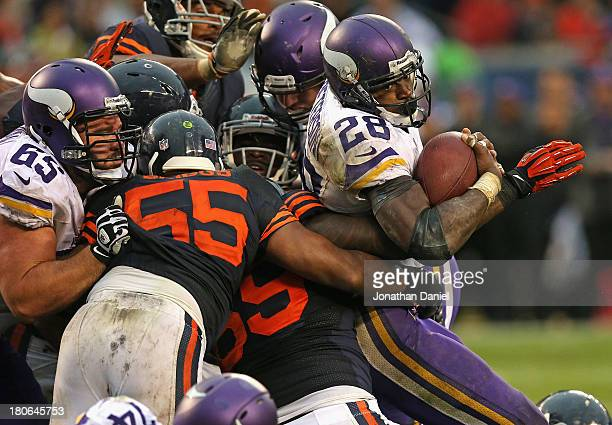 Adrian Peterson of the Minnesota Vikings is stopped by members of the Chicago Bear defense including Lance Briggs and Henry Melton at Soldier Field...