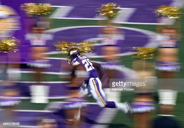 Adrian Peterson of the Minnesota Vikings runs onto the field before the game against the Detroit Lions on September 20 2015 at TCF Bank Stadium in...