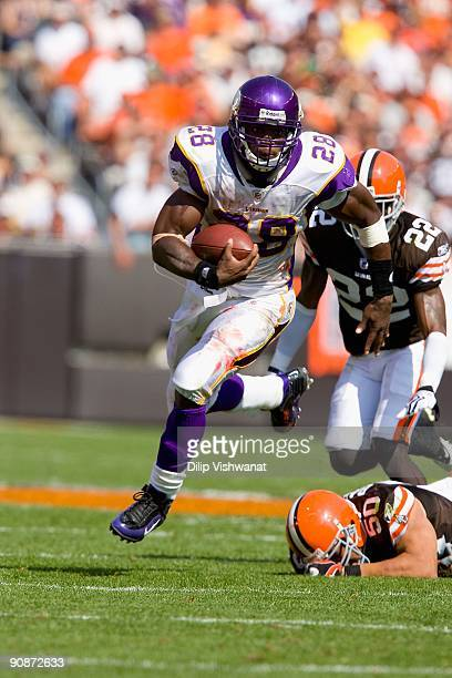 Adrian Peterson of the Minnesota Vikings rushes against the Cleveland Browns on September 13 2009 at Cleveland Browns Stadium in Cleveland Ohio The...