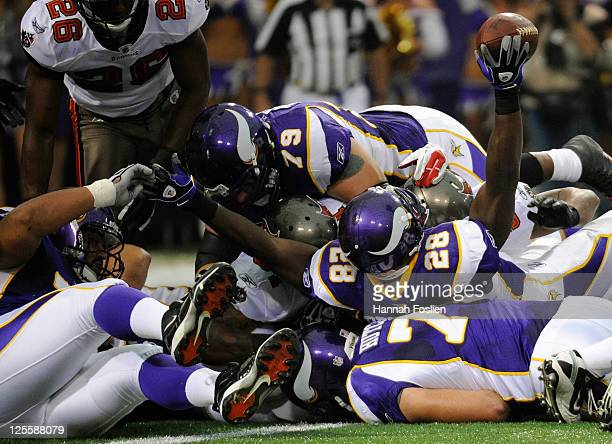 Adrian Peterson of the Minnesota Vikings scores a touchdown against the Tampa Bay Buccaneers in the first quarter on September 18 2011 at the Hubert...