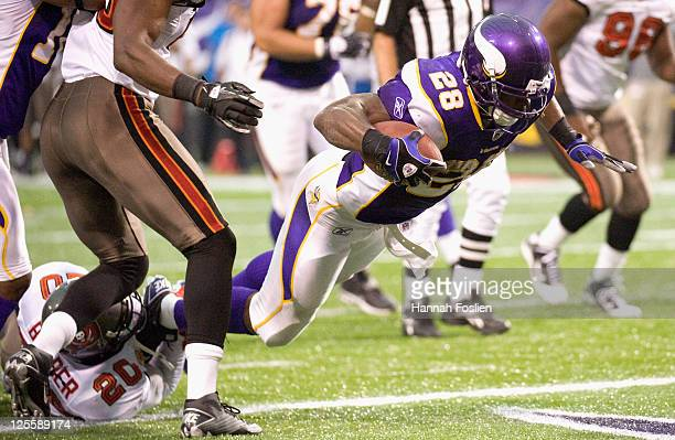 Adrian Peterson of the Minnesota Vikings scores a touchdown against the Tampa Bay Buccaneers in the second quarter on September 18, 2011 at Hubert H....