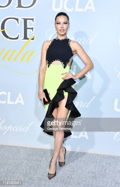 Adriana Lima arrives at the 2019 Hollywood For Science Gala at Private Residence on February 21, 2019 in Los Angeles, California.
