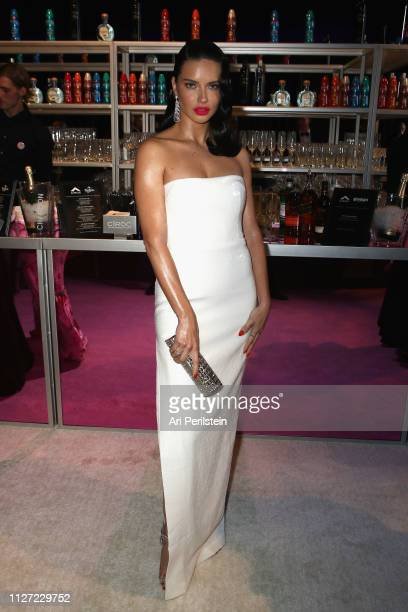 Adriana Lima attends the 27th annual Elton John AIDS Foundation Academy Awards Viewing Party celebrating EJAF and the 91st Academy Awards with...
