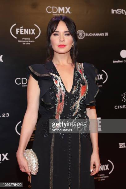 Adriana Louvier attends the Iberoamerican Fenix Film Awards 2018 at Teatro de la Ciudad Esperanza Iris on November 7 2018 in Mexico City Mexico