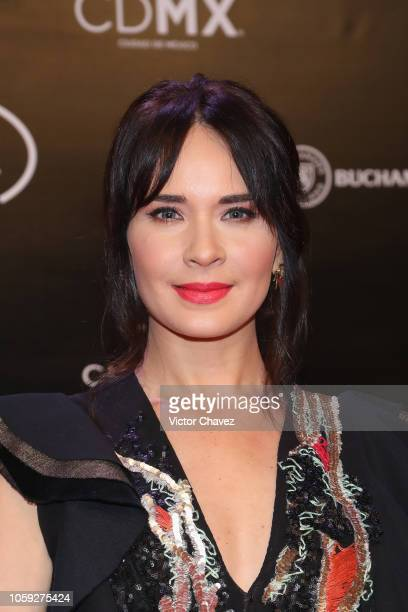 Adriana Louvier attends the Iberoamerican Fenix Film Awards 2018 at Teatro de la Ciudad Esperanza Iris on November 7 2018 in Mexico City Mexico