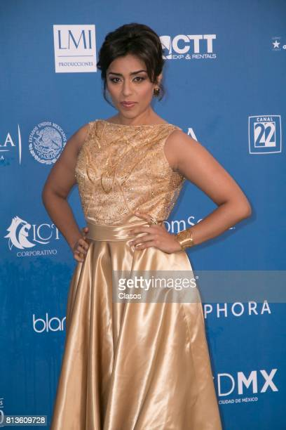 Adriana Paz poses during during the 59th Ariel Awards Red Carpet at Palacio de Bellas Artes on July 11 2017 in Mexico City Mexico