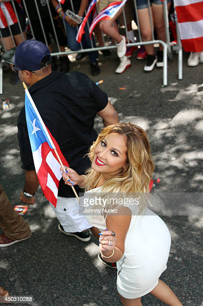 Adrienne Bailon attends the 2014 Puerto Rican Day Parade on June 8 2014 in New York City