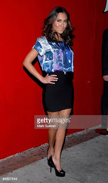 Adrienne Bailon of The Cheetah Girls attends the launch party for 'Afro Samurai' for Xbox 360 and Playstation 3 at the Geisha House on January 27...