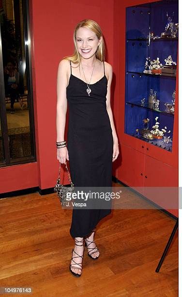 Adrienne Frantz during Vogue Takes Beverly Hills Daniel Swarovski Party at Daniel Swarovski Store at Hollywood Highland in Hollywood California...