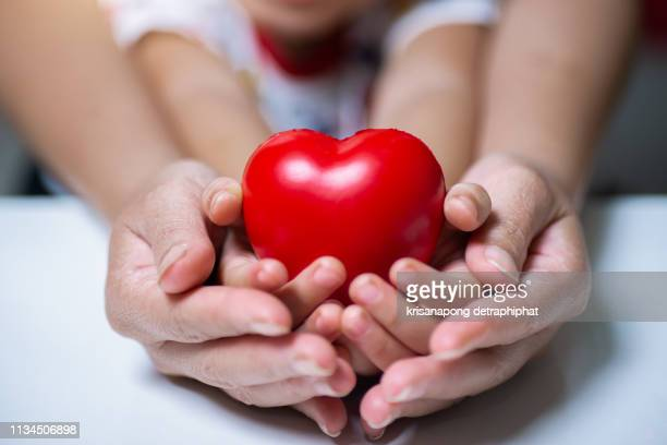 adult and child hands holding red heart, health care, donate and family insurance concept,world heart day, world health day, - cholesterol stock pictures, royalty-free photos & images