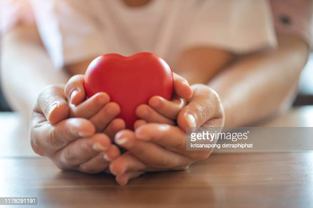 adult and child hands holding red heart, health care, donate and family insurance concept,world heart day, world health day, - charitable donation stock pictures, royalty-free photos & images