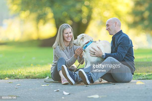 adult couple playing with their dog in a park on a - 30 39 years stock pictures, royalty-free photos & images