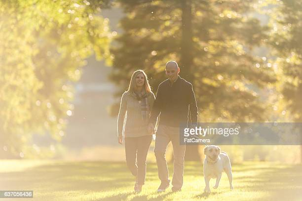 Adult couple walking their dog in a park at sunset