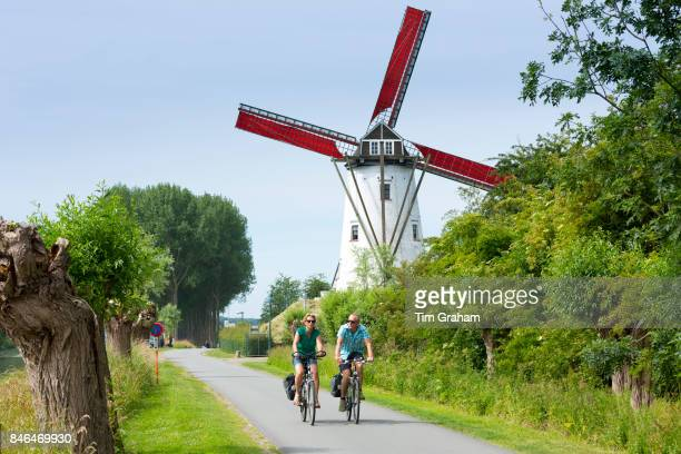 Adult cyclists riding bicycles past traditional Schellemolen windmill at Damme, West Flanders in Belgium.