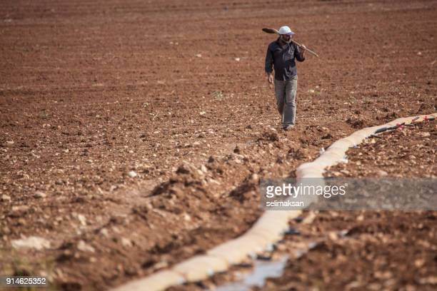 adult farmer holding shovel for irrigation in field - şanlıurfa stock pictures, royalty-free photos & images
