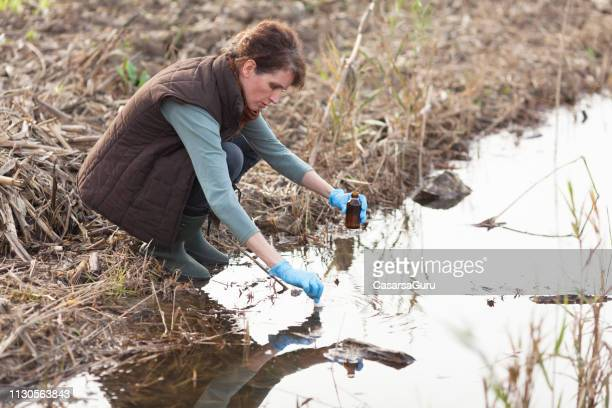 adult female biologist taking a sample of polluted water - riverbank stock pictures, royalty-free photos & images