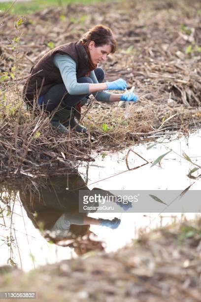 adult female biologist,analyzing watter pollution - biologo foto e immagini stock