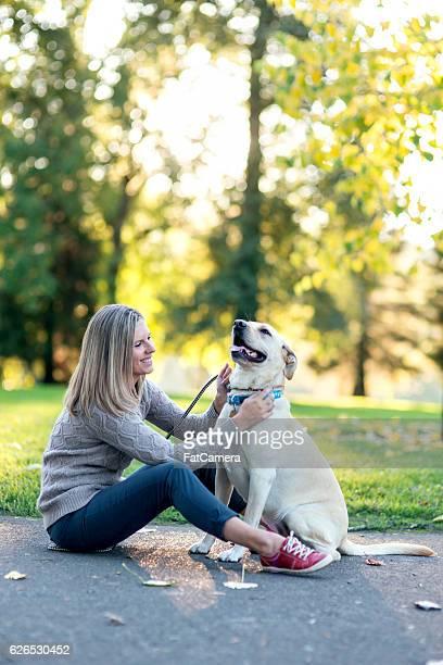 Adult female putting leash on her labrador dog