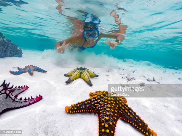adult female showing peace sign while snorkeling around tropical starfish - zanzibar stock pictures, royalty-free photos & images