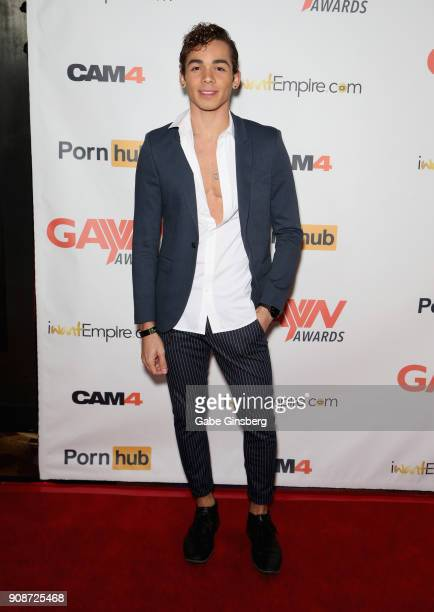 Adult film actor Ashton Summers attends the 2018 GayVN Awards show at The Joint inside the Hard Rock Hotel Casino on January 21 2018 in Las Vegas...