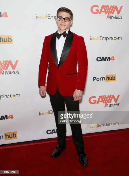 Adult film actor Blake Mitchell attends the 2018 GayVN Awards show at The Joint inside the Hard Rock Hotel Casino on January 21 2018 in Las Vegas...