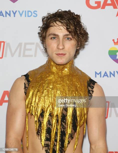 Adult film actor Calvin Banks attends the 2019 GayVN Awards show at The Joint inside the Hard Rock Hotel Casino on January 21 2019 in Las Vegas Nevada