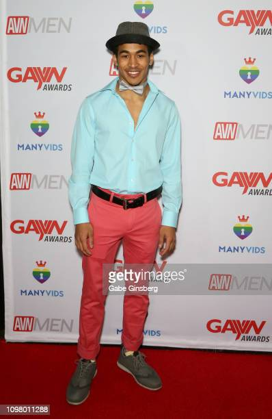 Adult film actor Mateo Fernandez attends the 2019 GayVN Awards show at The Joint inside the Hard Rock Hotel Casino on January 21 2019 in Las Vegas...