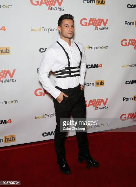 Adult film actor Ricky Roman attends the 2018 GayVN Awards show at The Joint inside the Hard Rock Hotel Casino on January 21 2018 in Las Vegas Nevada