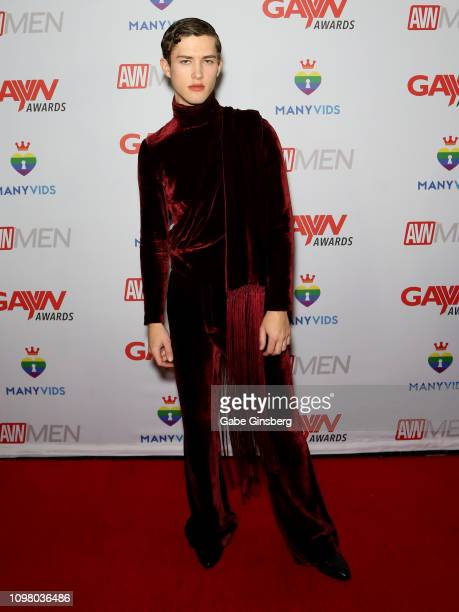 Adult film actor Sean Ford attends the 2019 GayVN Awards show at The Joint inside the Hard Rock Hotel Casino on January 21 2019 in Las Vegas Nevada