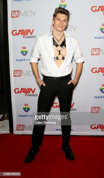 Adult film actor Troy Accola attends the 2019 GayVN Awards show at The Joint inside the Hard Rock Hotel Casino on January 21 2019 in Las Vegas Nevada