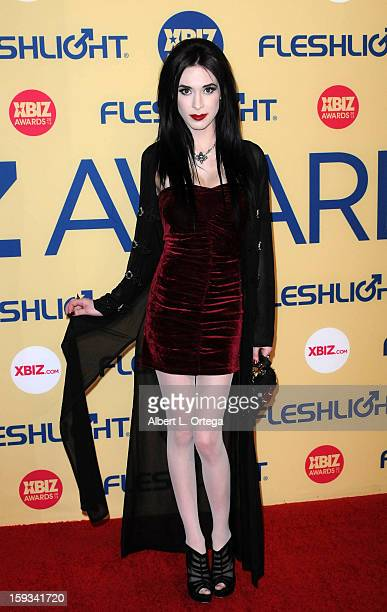 Adult Film actress Aiden Ashley arrives for the 2013 XBIZ Awards held at the Hyatt Regency Century Plaza on January 11 2013 in Century City California