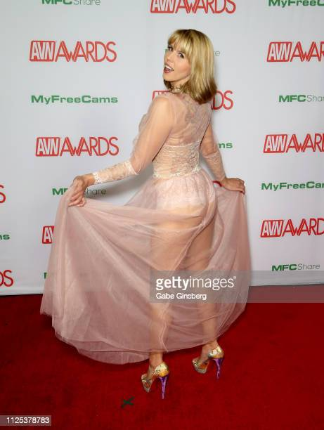 Adult film actress Amber Chase attends the 2019 Adult Video News Awards at The Joint inside the Hard Rock Hotel Casino on January 26 2019 in Las...
