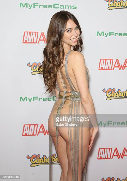 Adult film actress and cohost Riley Reid attends the 2017 Adult Video News Awards at the Hard Rock Hotel Casino on January 21 2017 in Las Vegas Nevada