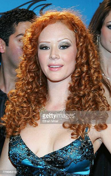 Adult film actress Audrey Hollander arrives at the 24th annual Adult Video News Awards Show at the Mandalay Bay Events Center January 13 2007 in Las...