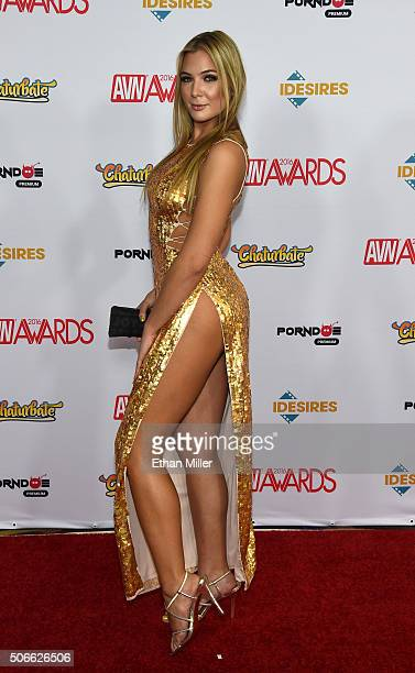 Adult film actress Blair Williams attends the 2016 Adult Video News Awards at the Hard Rock Hotel Casino on January 23 2016 in Las Vegas Nevada