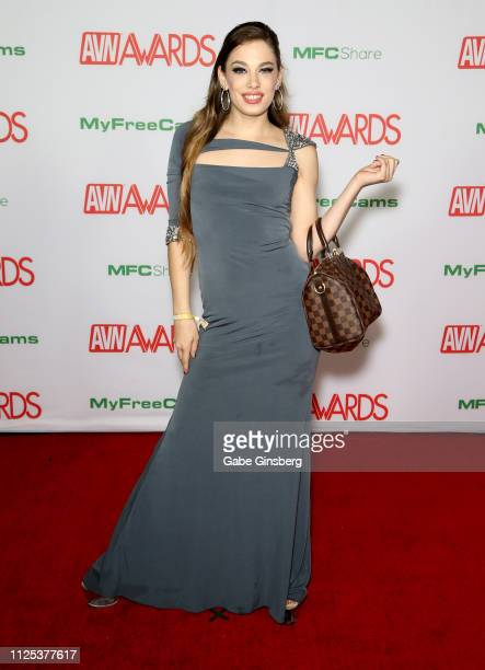 Adult film actress Bobbi Dylan attends the 2019 Adult Video News Awards at The Joint inside the Hard Rock Hotel Casino on January 26 2019 in Las...