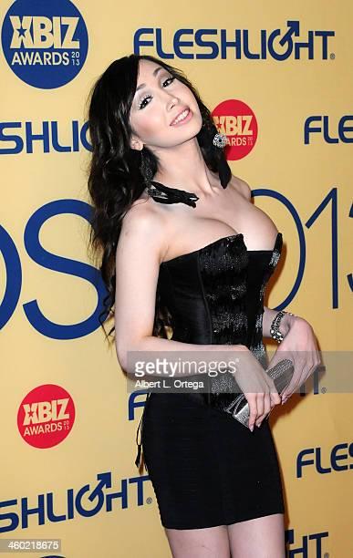 Adult film actress Christian Taylor arrives for the 2013 XBIZ Awards held at the Hyatt Regency Century Plaza on January 11 2013 in Century City...