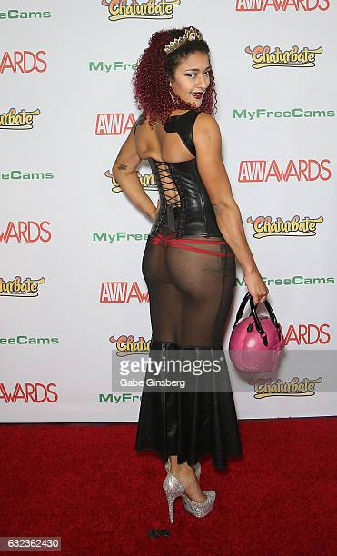 Adult film actress Daisy Ducati attends the 2017 Adult Video News Awards at the Hard Rock Hotel Casino on January 21 2017 in Las Vegas Nevada