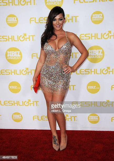 Adult film actress Destiny Dixon arrives for the 2014 XBIZ Awards held at The Hyatt Regency Century Plaza Hotel on January 24 2014 in Century City...