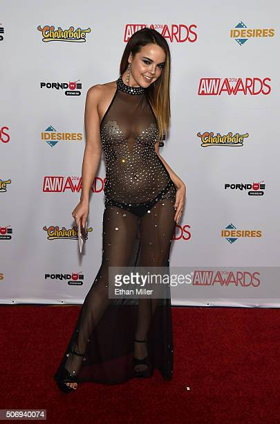 Adult film actress Dillion Harper attends the 2016 Adult Video News Awards at the Hard Rock Hotel Casino on January 23 2016 in Las Vegas Nevada