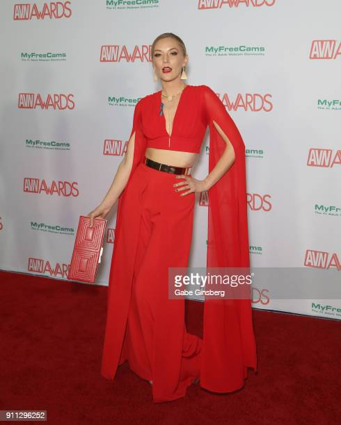 Adult film actress Mona Wales attends the 2018 Adult Video News Awards at the Hard Rock Hotel & Casino on January 27, 2018 in Las Vegas, Nevada.