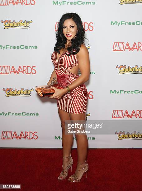 Adult film actress Morgan Lee attends the 2017 Adult Video News Awards at the Hard Rock Hotel Casino on January 21 2017 in Las Vegas Nevada