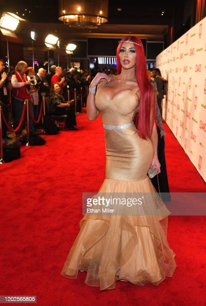 Adult film actress Nicolette Shea attends the 2020 Adult Video News Awards at The Joint inside the Hard Rock Hotel & Casino on January 25, 2020 in...