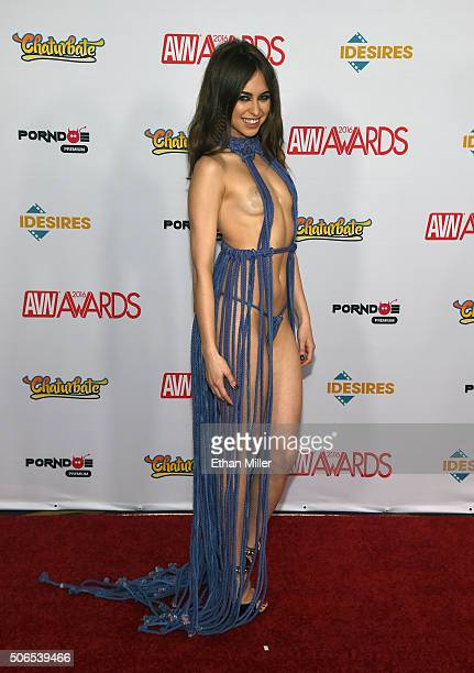 Adult film actress Riley Reid attends the 2016 Adult Video News Awards at the Hard Rock Hotel Casino on January 23 2016 in Las Vegas Nevada