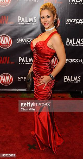 Adult film actress Sara Sloane arrives at the 27th annual Adult Video News Awards Show at the Palms Casino Resort January 9 2010 in Las Vegas Nevada